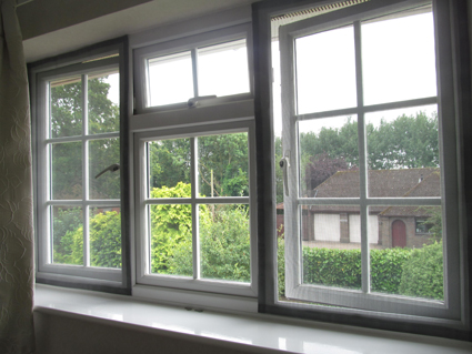 Flat Cats Window Screens in Wokingham, Berkshire